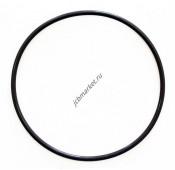 Уплотнительное кольцо (1000098355, F03/30784, 11712993)